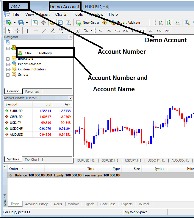 Account Name and Account Number on MetaTrader 4 Stock Trading Platform Account - Stock MetaTrader Account